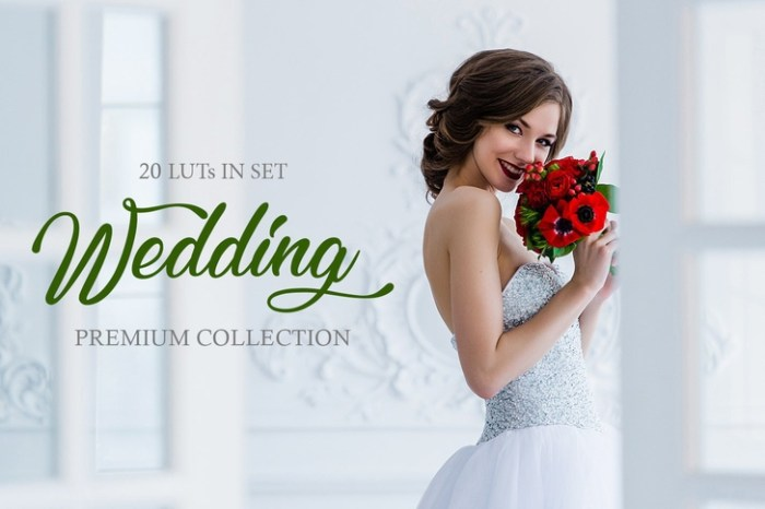 Wedding Video LUTs Pack for Final Cut Pro Photoshop After Effects Premiere Pro Screenshot 01 zxc9dkn