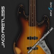 Ample Sound Ample Bass Jaco Fretless icon