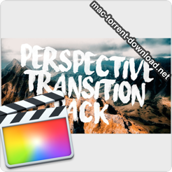 Ryan Nangle Perspective Transition Pack icon