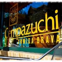 Spotlight: Cempazuchi