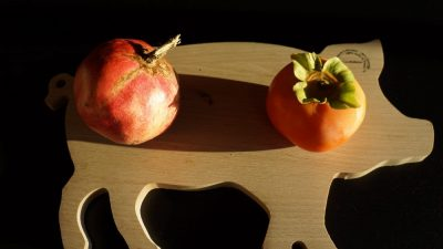 fruits-du-jardin