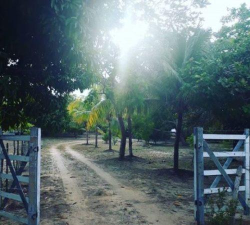 Camping Sitio Santo Antonio