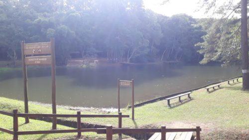 Camping Horto Florestal de Manduri-SP-3