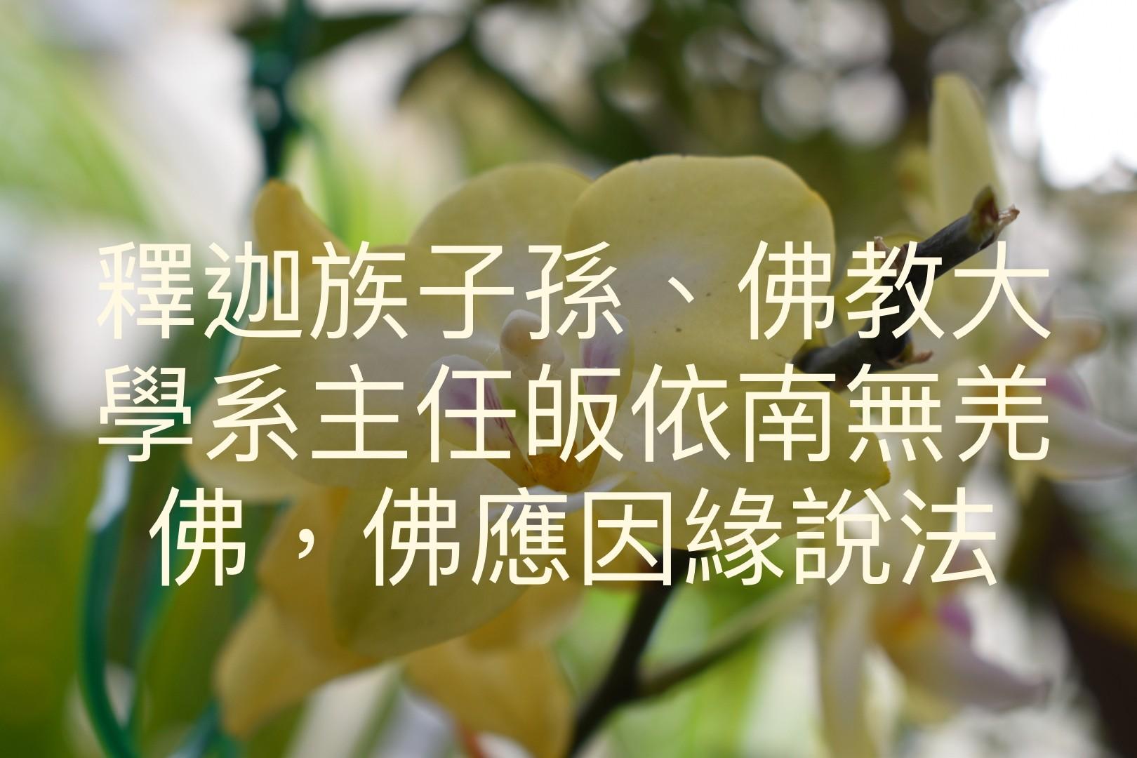 釋迦族子孫、佛教大學系主任皈依南無羌佛,佛應因緣說法