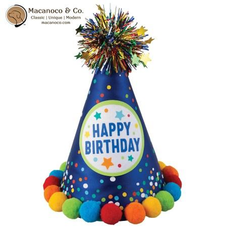 251122 Primary Birthday Cone Hat 1