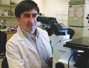 Dr. Shoukhrat Mitalipov of the Oregon Health & Science University in Portland