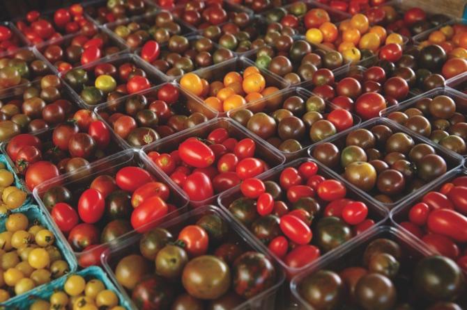 Tastier Tomato