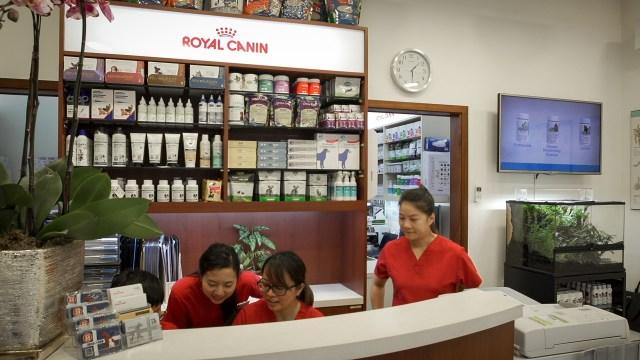 Macau veterinarian clinics