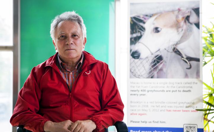 Albano Martins