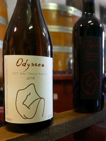 Odyssea ansonica orange wine