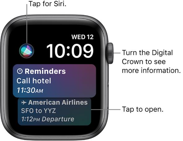 Apple Watch's Siri watch face