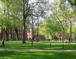 Harvard College freshman dormitories in Harvard Yard