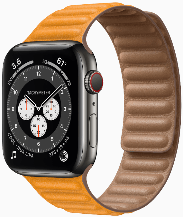 Apple Watch Series 6 in striking graphite stainless steel and California Poppy Leather Link strap