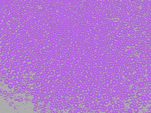 05_A015