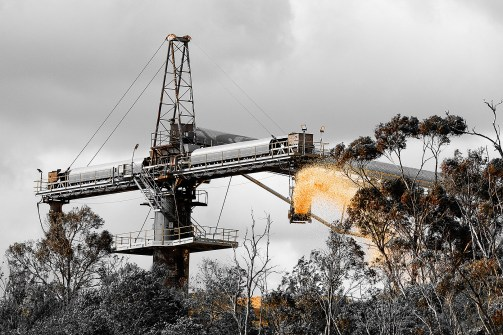 2020_06_A008_SET_Woodchip distributor Eden NSW_EDPI