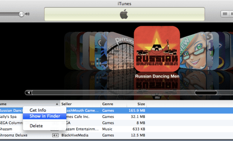 How to get files used in iOS games