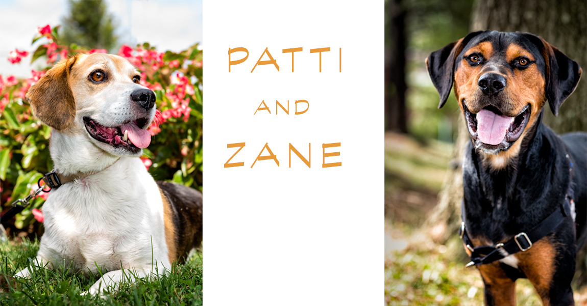 Patti-and-Zane-Thumbnail-2.jpg