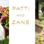 An afternoon with Rescue Dogs: Patti and Zane