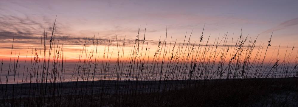 Cumberland Island – Seagrass Sunset