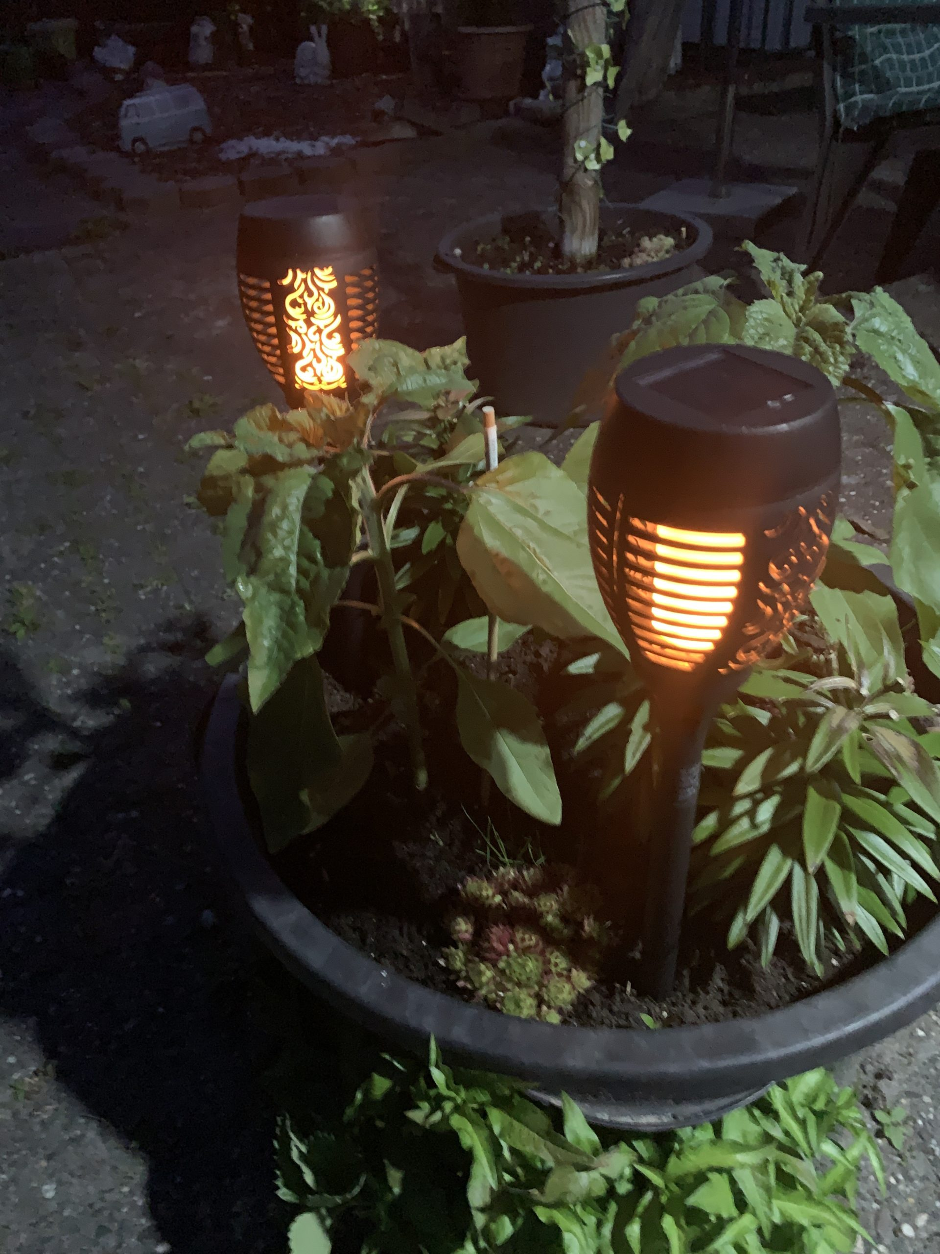 Solar LED Gartenfackeln Produkttest