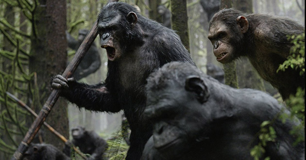 Dawn of the Planet of The Apes Movie Still 2