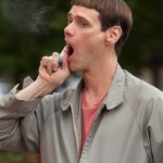 Dumb and Dumber To Movie Featured Image