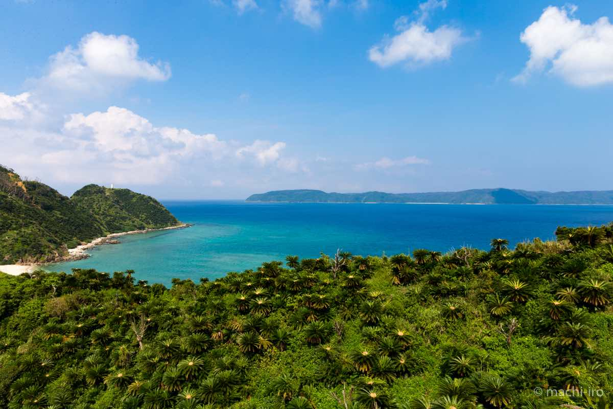 今井崎、蒲生崎、そして東シナ海を望む