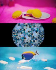 サンシャイン水族館 特別展 いきもの×光×色=イキモノアート展