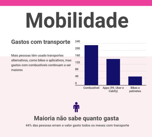Captura de tela gastos com transporte, demonstrando em gráficos combustível, apps, bikes e patinetes