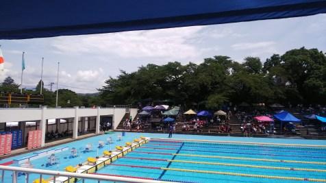 県中体連水泳大会。会津水泳場3日間通いました。(東舘・女性)