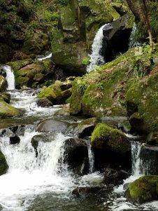 滝川渓谷おぼろ滝。つい何枚も写真を撮りました(東舘・男性)