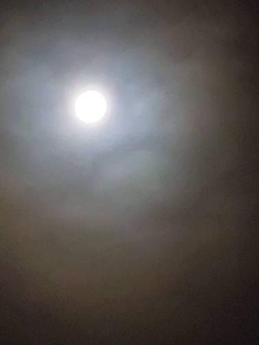 中秋の名月。スマホでもここまで撮れました(東舘・男性)