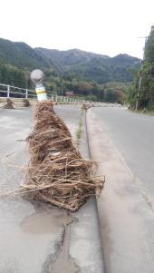 関岡の旧道沿いです。久慈川が氾濫、冠水し、流されたゴミがあちこちに残っています。(東館・男性)