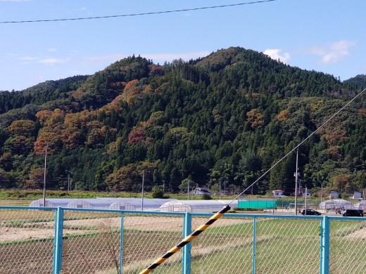 紅葉も始まっていますね。台風来たからあんまり鮮やかにならないのかなぁ?(内川・男性)