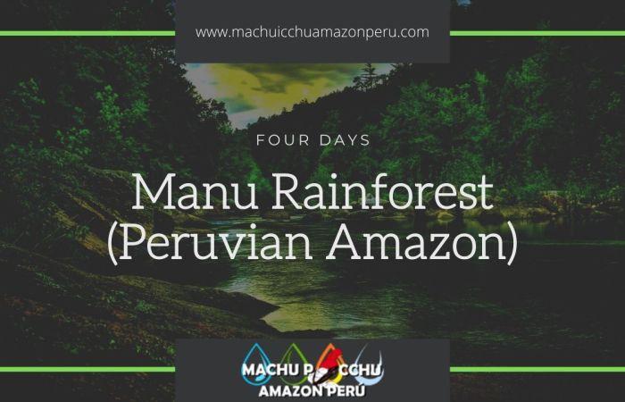 Manu Rainforest Tour