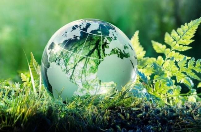 Certificado Travelife: um compromisso com o turismo sustentável