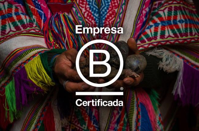 Empresa B: uma nova modalidade de negócios