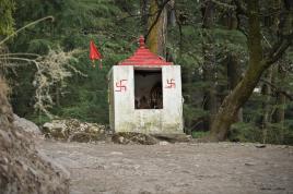 Dzień siódmy Indie góry małpki ludzie. 27.03.2019 Fot. Maciej Załuski