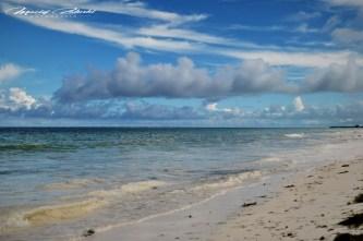 Zanzibar-Masajowie-Masajki-Ocean-Owoce-warzywa-plaża-ludzie-Małpka-Fot.Macie-23