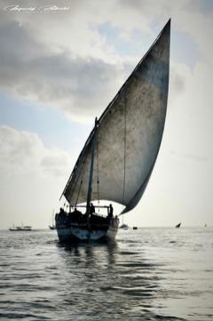 Zanzibar- zdjęcia z wakacji