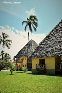 Zanzibar-Masajowie-Masajki-Ocean-Owoce-warzywa-plaża-ludzie-Małpka-Fot.Macie-28