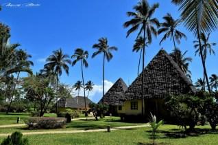 Zanzibar-Masajowie-Masajki-Ocean-Owoce-warzywa-plaża-ludzie-Małpka-Fot.Macie-3