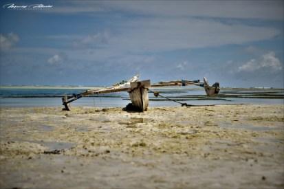 Zanzibar-Masajowie-Masajki-Ocean-Owoce-warzywa-plaża-ludzie-Małpka-Fot.Macie-39