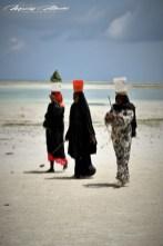 Zanzibar-Masajowie-Masajki-Ocean-Owoce-warzywa-plaża-ludzie-Małpka-Fot.Macie-42