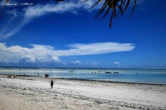 Zanzibar-Masajowie-Masajki-Ocean-Owoce-warzywa-plaża-ludzie-Małpka-Fot.Macie-7