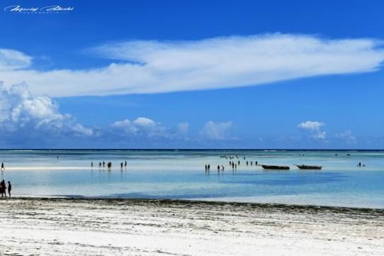 Zanzibar-Masajowie-Masajki-Ocean-Owoce-warzywa-plaża-ludzie-Małpka-Fot.Macie-8