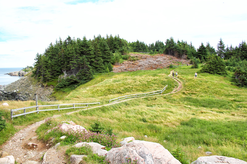 Trail, Green, Winding, Ocean, Nova Scotia, Cape Breton, Middle Head