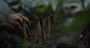 Violence-01-Actor-Rodrigo-Vélez