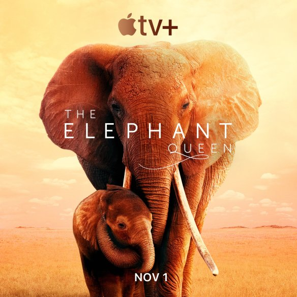 The Elephant Queen - Apple TV