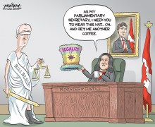 Editorial Cartoon by Graeme MacKay, The Hamilton Spectator Ð Wednesday January 13, 2016 The Blair roach project has won a powerful supporter. Premier Kathleen Wynne said she is pleased Prime Minister Justin Trudeau has asked former Toronto police chief Bill Blair, now Scarborough Southwest MP, to lead the marijuana legalization efforts. ÒI have a lot of respect for Bill Blair. I think that heÕll do a great job and his taking on of that role is the beginning of that national conversation that I said we have to have,Ó Wynne told reporters Monday at QueenÕs Park. The premier added that she was heartened that Blair is embracing her proposal to have cannabis sold through government-owned Liquor Control Board of Ontario outlets. ÒIÕm encouraged that he had, as a preliminary approach, that he thinks that it might make sense to use a distribution network thatÕs in place, . . . (although thatÕs) not a foregone conclusion,Ó she said. ÒHeÕs got a lot of people to talk to and heÕs got a lot of questions to ask and a lot of decisions to make over the coming months, so I look forward to that conversation.Ó Blair, a rookie MP who is parliamentary secretary to Justice Minister Jody Wilson-Raybould, will work with a three-member cabinet team and a soon-to-be-named federal-provincial-territorial task force to develop the policy for legalizing marijuana. On Friday, Blair said Ottawa will look to Colorado and other jurisdictions that have legalized marijuana sales. ÒWe have pretty robust systems of regulation for other intoxicants in this country, mostly overseen by the provinces, and so weÕve already got a model, a framework we can build on here,Ó he said. ÒI think there are certain modifications or adjustments that we may have to make for cannabis as opposed to alcohol, but I think there is already a strong system in place for the control and regulationÓ of marijuana sales here. The police veteran, who himself has never smoked marijuana, pointed out that it is Òvery difficul